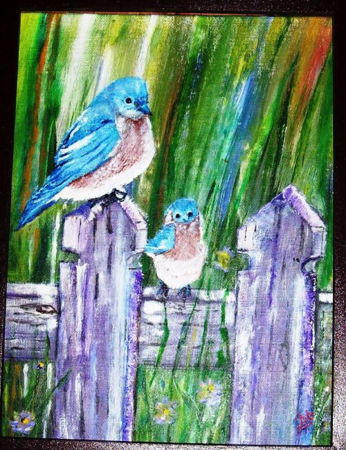 "Eastern Bluebirds Oil on Canvas 16x20"""