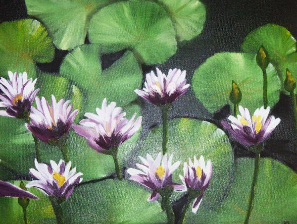 WATER LILLIES Oil on Canvas 16x20""